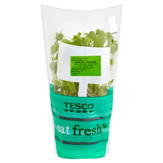 Tesco Eat Fresh Koriandr setý