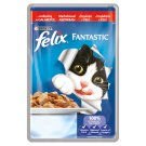 FELIX Fantastic with Beef in Jelly 100g