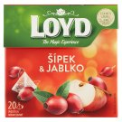 Loyd Fruit Tea with Rosehip & Apple 20 x 2g