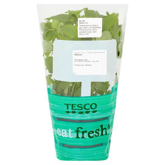Tesco Eat Fresh Meduňka