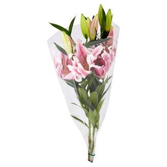 Tesco Kytice lilie 3 stonky