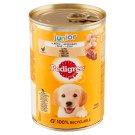 Pedigree Junior Chicken in Jelly Complete Dog Food 400g