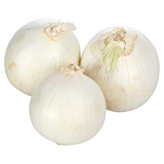 Cibule bílá
