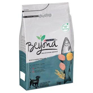 BEYOND SIMPLY 9 s lososem 3kg