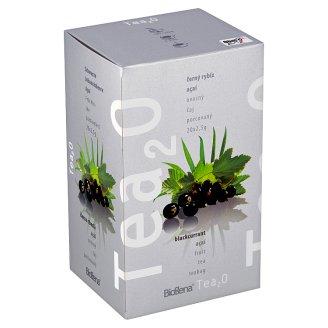 Biogena Tea2O Ovocný čaj porcovaný černý rybíz & açaí 20 x 2,5g
