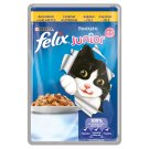 FELIX Fantastic Junior with Chicken in Jelly 100g
