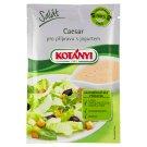 Kotányi Salad Caesar for the Preparation with Yogurt 13g