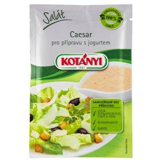 Kotányi Salát Caesar pro přípravu s jogurtem 13g