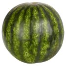 Watermelon Halved
