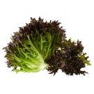 Crispy Red Salad 1 pcs
