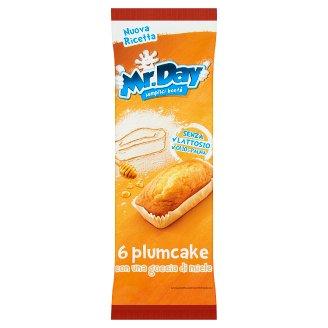 Mr. Day Plumcake 190g