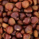 Chestnuts Edible