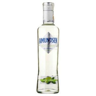 Amundsen Lime&Mint 0,5l
