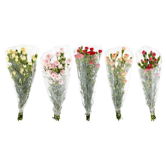 Tesco Carnations Large