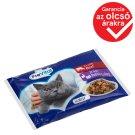 PreVital Vital Pack teljes értékű állateledel felnőtt macskák számára hússal zselében 4 x 100 g