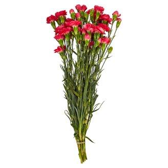 Tesco Carnation Bouquet 10 Thread