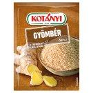 Kotányi Ground Ginger 22 g