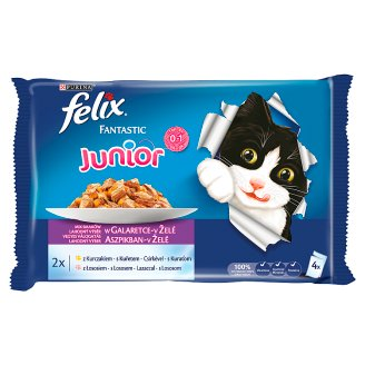 Felix Fantastic Junior Complete Food for Kitten with Chicken and Salmon 4 x 100 g