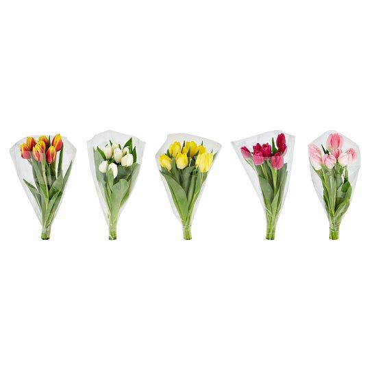 Tesco tulipán 7 szál 5 színben