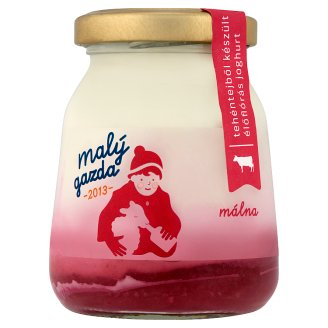 Malý Gazda Yoghurt on Raspberry Fruit Bed 210 g