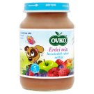 Ovko Gluten- and Dairy-Free Forest Fruit Mix Dessert with No Added Sugar for Babies 5+ Months 190 g