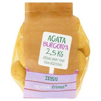 Tesco Agata burgonya 2,5 kg