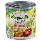 Bonduelle Créatif Mexico zöldségkeverék 170 g