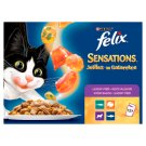 Felix Sensations Complementary Pet Food for Adult Cats in Tasty Aspic 12 x 100 g