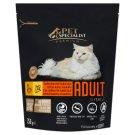 Tesco Pet Specialist Premium száraz állateledel felnőtt macskáknak csirkével és kukoricával 750 g