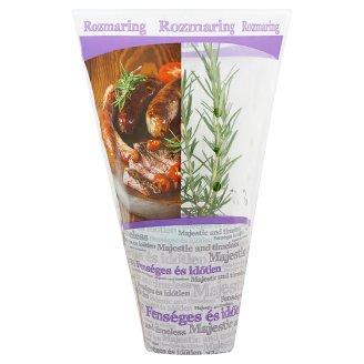 Zöldpont Rosemary