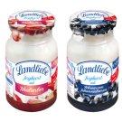 Landliebe Rhubarb or Blackcurrant Yoghurt 150 g
