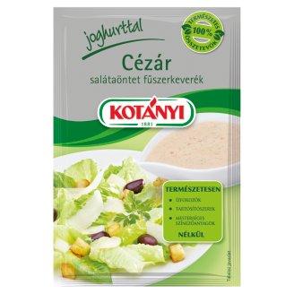 Kotányi Caesar Salad Dressing Spice Mix 13 g