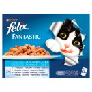 Felix Fantastic Halas Falatok Complete Pet Food for Adult Cats 12 x 100 g