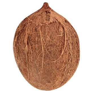 Kókuszdió