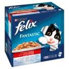Felix Fantastic Házias Válogatás teljes értékű eledel felnőtt macskák számára aszpikban 24 x 100 g