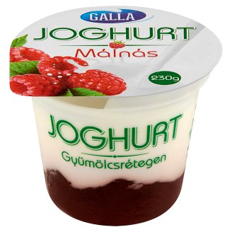 Galla Yoghurt on Raspberry Fruit Layer 230 g