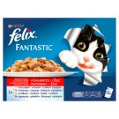 Felix Fantastic Home Style Selection Complete Pet Food for Adult Cats 12 x 100 g