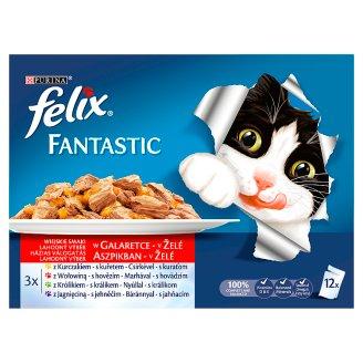 Felix Fantastic Húsos Falatok Complete Pet Food for Adult Cats 12 x 100 g