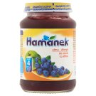 Hamánek Apple-Blueberry Dessert for Babies 4+ Months 190 g