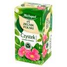 Herbapol Zielnik Polski Suplement diety herbatka ziołowa czystek 40 g (20 x 2 g)