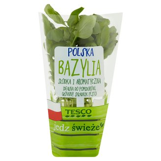 Tesco Polish Basil in Pot