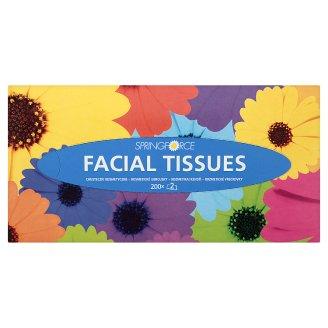 Springforce Facial Tissues 2 Ply 200 Pieces