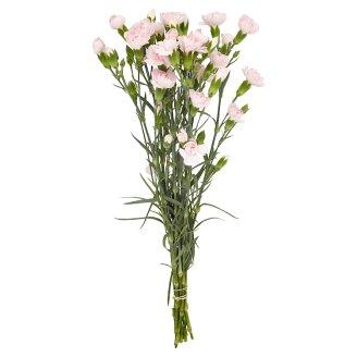 Mini Carnation Posy 10 Pieces