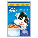 Felix Fantastic with Chicken in Jelly Complete Food 100 g