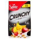 Sante Crunchy Fruit Crispy Flakes 350 g