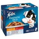Felix Fantastic Duo Karma dla dorosłych kotów wiejskie smaki w galaretce 1200 g (12 x 100 g)