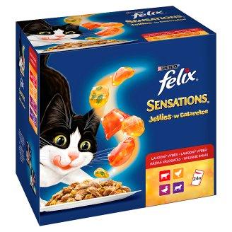 Felix Sensations Karma dla dorosłych kotów wiejskie smaki w galaretce 2400 g (24 x 100 g)