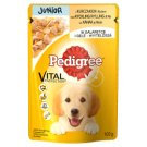 Pedigree Complete Food for Growing Dogs and Puppies with Chicken in Jelly 100 g