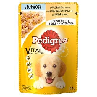 Pedigree Junior z kurczakiem w galaretce Karma pełnoporcjowa 100 g