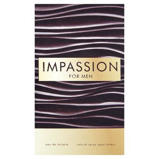 Vittorio Bellucci Exclusive Perfume Impassion for Men Woda toaletowa 100 ml